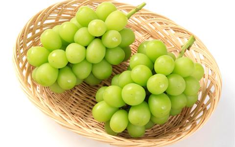 "Shine Muscat"" Grapes | Centrair OISHII Premium Selection | Chubu Centrair International Airport, Nagoya"